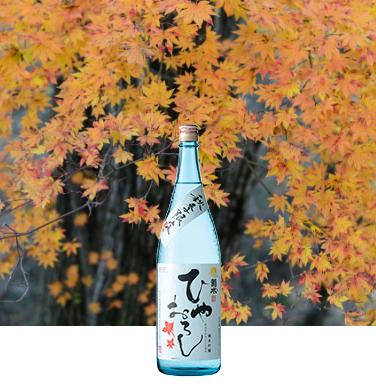 秋冬季限定 純米吟醸 ひやおろし